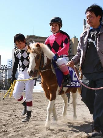 120219ポニーレースin川崎-本馬場入場-2番ヒロミジョー号と皆川麻由美元騎手-01