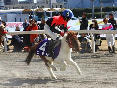 120219ポニーレースin川崎-レース-13