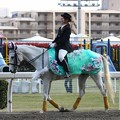 写真: 川崎競馬の誘導馬04月開催 桜Verその2-120409-04-large