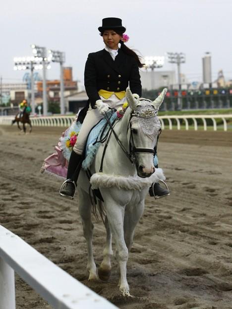 写真: 川崎競馬の誘導馬05月開催 誕生日記念レースVer-17-large