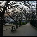 Photos: P3040213