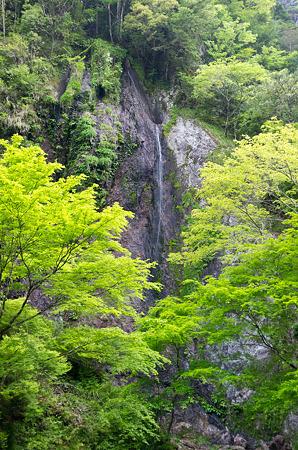布滝 2012.5.7