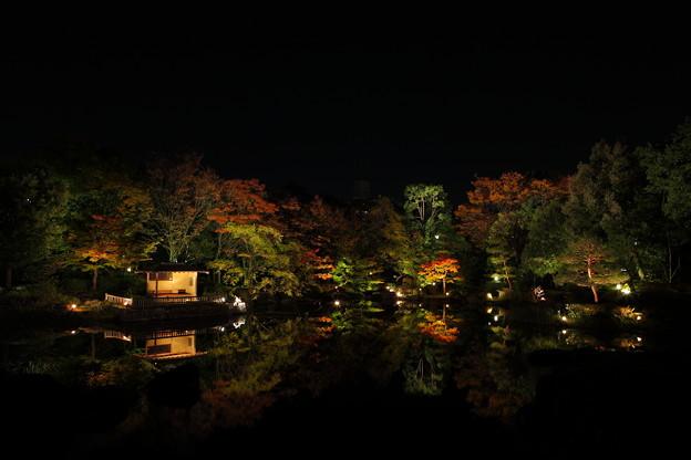 Photos: 『浮かぶ秋。。。』