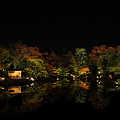 写真: 『浮かぶ秋。。。』