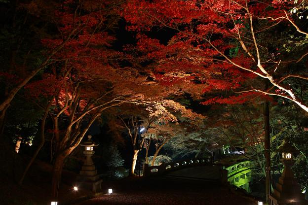 写真: 『紅のトンネル』
