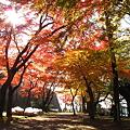 Photos: 盛岡城跡公園(岩手公園)にて・2