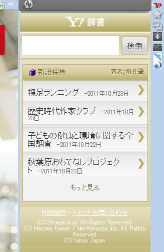 写真: Operaパネル:iPhone版Yahoo!辞書(拡大)