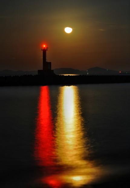 写真: 月光シンフォニー