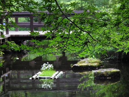 昭和記念公園 195
