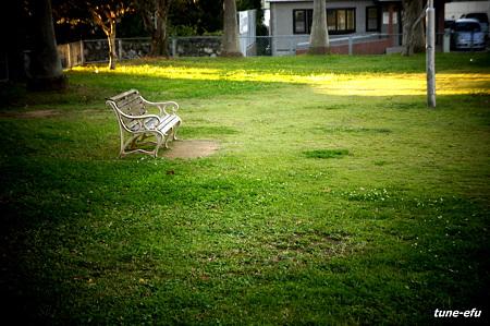 白いベンチのある公園