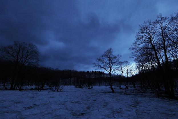 森の畏れを感じる刻