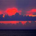 Photos: 朝陽のいたずら