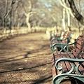 写真: 201201-02-030PZ