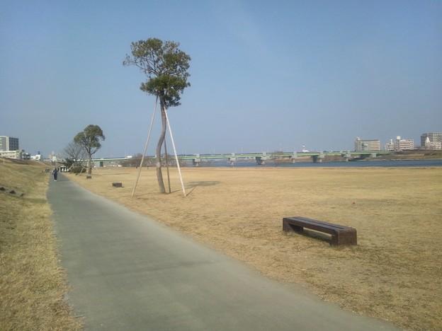 大淀川河川敷の公園5