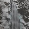 写真: 吹雪時の秋保大滝