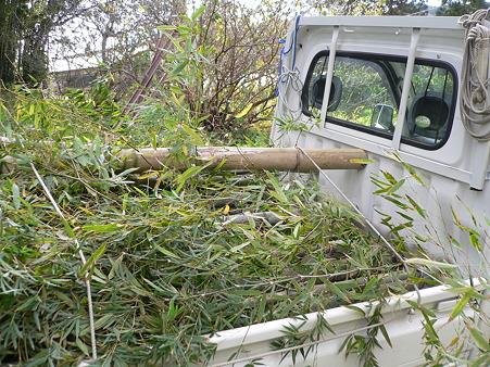 暗渠用の竹運搬