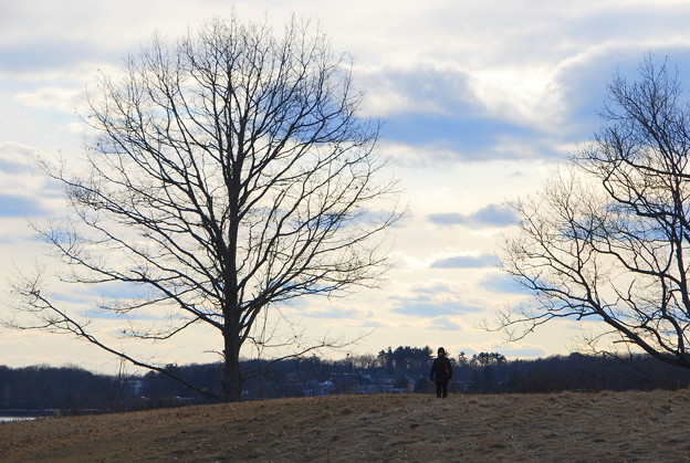 C on the Hill 2-18-12