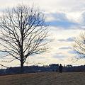写真: C on the Hill 2-18-12