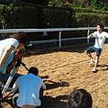 写真: 坂路撮影、浜中バージョン(笑)