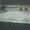 Photos: 雪とかちょっと意味わかんな...