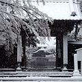 Photos: 円覚寺正続院1-20120229