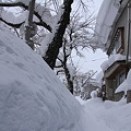 雪に埋もれる歩道02-12.01.14