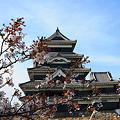 松本城と桜~IMG_2940_2