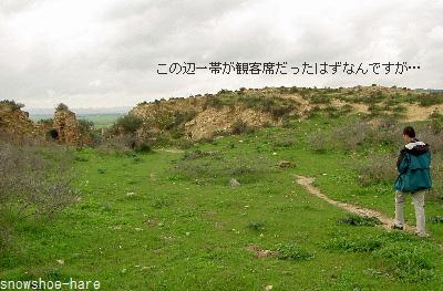 円形闘技場の跡