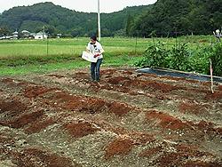肥料14-14-14