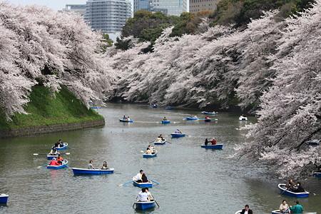 2012.04.10 九段 千鳥ケ淵