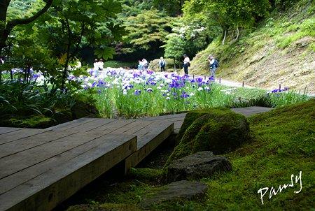 明月院後庭園・・11