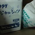 Photos: 札幌のJJのママからシート