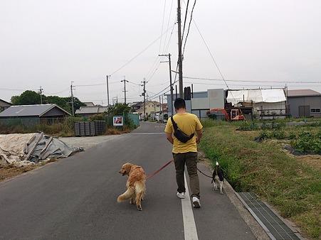弟さんと散歩