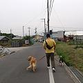 Photos: 弟さんと散歩