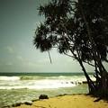 写真: 海岸
