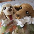 写真: 犬用ケーキ