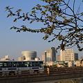 岡山の鶴見橋