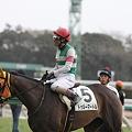 Photos: 1レース・トゥルーマートルその4
