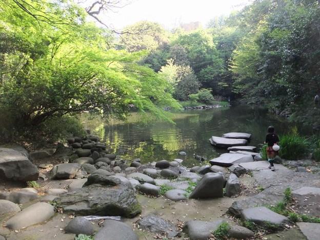 三四郎池4
