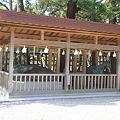 Photos: 110519-51出雲大社・神馬神牛