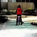 少女・自転車・鳩