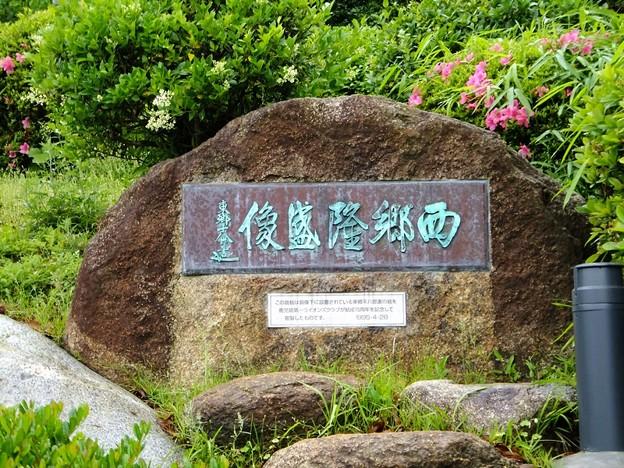 写真: 西郷隆盛岩