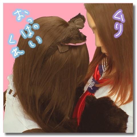 フォト蔵ひんにゅうVSきょにゅうアルバム: Twitter (131)写真データフォト蔵ツイート