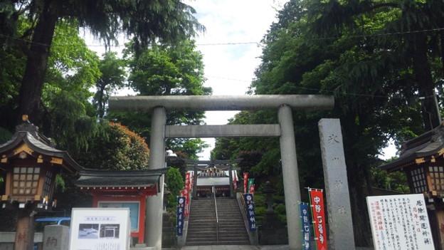 沼袋氷川神社 (中野区)