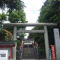 Photos: 沼袋氷川神社 (中野区)