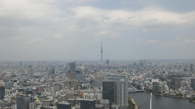 Photos: 今日の東京1/17。またア...
