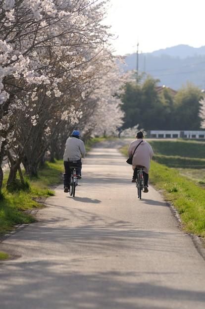Photos: 花道