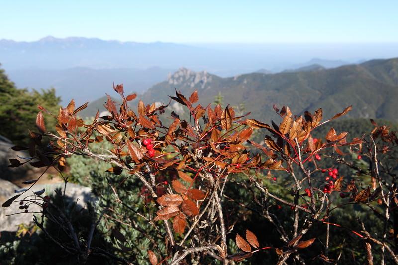 IMG_5183金峰山登山