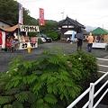 2011/6/19津山長法寺紫陽花