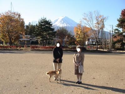 写真: 八木崎公園